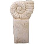 Ammonit Valo, creme/white, Concrete, 7x6,5x16,5 cm