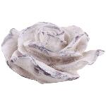 Blume Valo, creme/white, Polyresin, 25x25x13 cm