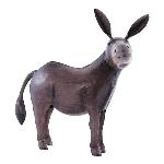 Esel Kanu, Metall, 55x24x55 cm