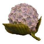 Hydrangea TroupeR, Polyresin, 22,4x19x13,3 cm