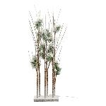 LED Baum Lumière, 90x27x15 cm