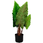Alocasia tree, ArtificialNature, 84 cm
