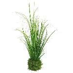 (Best) Gras in clod green 24cm