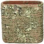 PflanzJardiniere moola, Zement, 21x9x20 cm