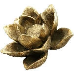 Lilie Aurum, gold, Polyresin, 13,5x13,5x9 cm