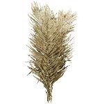 Cana Leaves Aride, grün, 90 cm