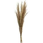 Broom Grass Aride, natur, 110 cm