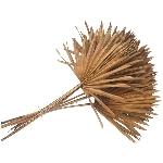 Sun Spear Aride, natur, 45 cm